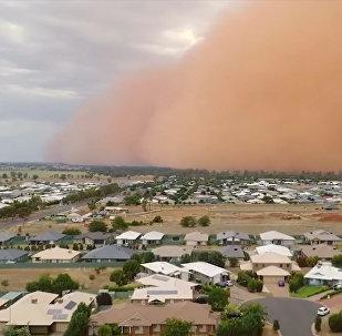 Словно в Апокалипсисе — город в Австралии поглотила песчаная буря. Видео