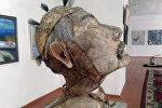 Сүрөтчү Кадыр Мусаев териден маңкурттун образын жасады