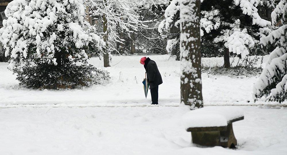 Женщина в парке после снегопада. Архивное фото