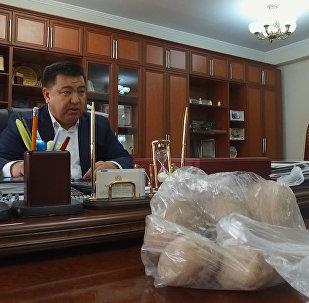 Айыл чарба министрине чириген картошка белекке берилди. Маектин видеосу