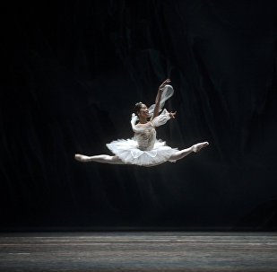 Чешская балерина на репетиции балета Баядерки в театре Маэстранса в Севилье (Испания)