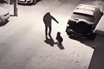Мгновенная карма! Машина жестко наказала пнувшего собаку мужчину — видео