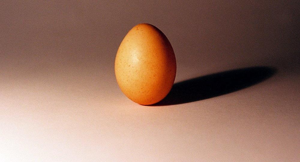 Человек держит яйцо в руках. Архивное фото