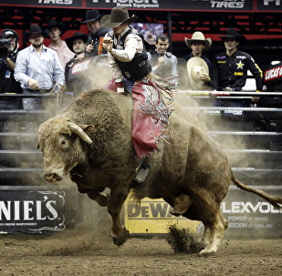 Один из лучших наездников на быках в мире 25-летний Мейсон Лоу
