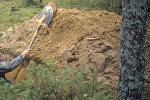 Мужчина копает землю. Архивное фото