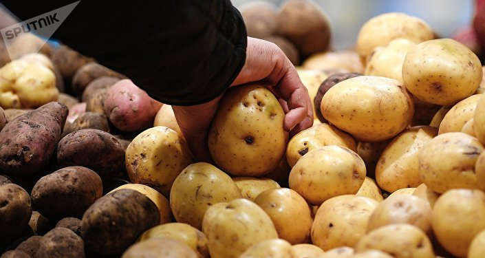 Продажа картошки. Архивное фото