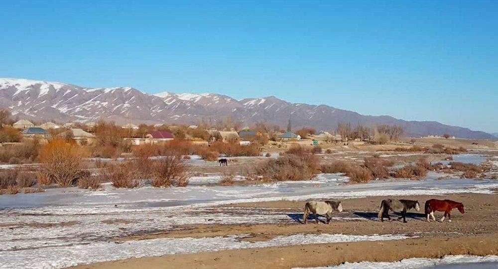 Село Кызыл-Добо в Кочкорском районе