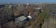 Что с растениями в Ботсаду, замерзшими при аварии на ТЭЦ Бишкека. Видео