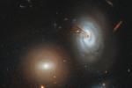 Радиотелескоп Хаббл снял спиральную галактику D100, стремительно теряющую газ, необходимый длясоздания звезд