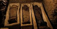 Египеттин Туна эль-Габаль районунан археологдор эски көрүстөндөрдү тапты