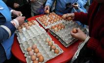 Продажа куриных яиц.