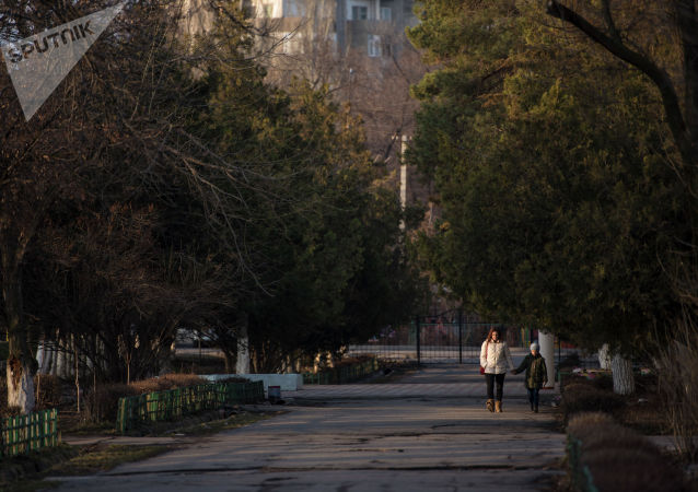 Женщина с ребенком идут по аллее в одном из микрорайонов Бишкека