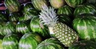 Арбузы и ананас. Архивное фото