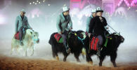 Сауд Аравиянын Эр-Рияд шаарында өткөн Camel Fest этнофестивалына катышкан кыргызстандыктар. Архивдик сүрөт