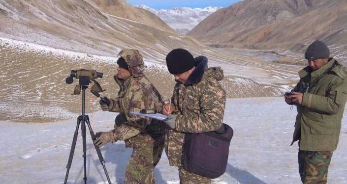 В Кыргызстане завершился зимний учет диких животных