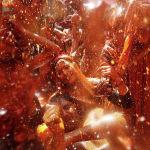 Индияда боектордун Холи фестивалы өттү
