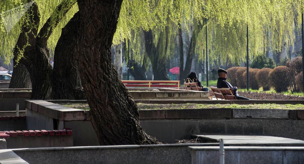 Отдыхающие на скамейке в одном из парков Бишкека. Архивное фото