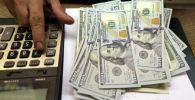 Киши доллар купюраларды санап отурат. Архив