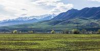 Кыргызстандын жаратылышы. Архивдик сүрөт