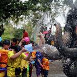 Таиландда кишилер менен пил Сонгкран суу фестивалын майрамдап жатат