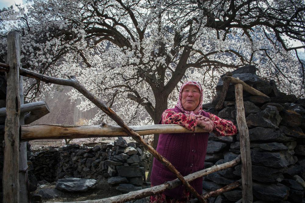 Зайнаб эженин айтымында, Баткендин көпчүлүк тургундары өрүк сатып жан багат