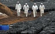 Сотрудники МЧС проводят работы по ликвидации захоронения химикатов. Архивное фото