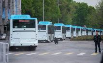 Новые автобусы в Бишкеке, работающие на газе