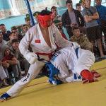 В рукопашном бою есть элементы как борьбы, так и бокса