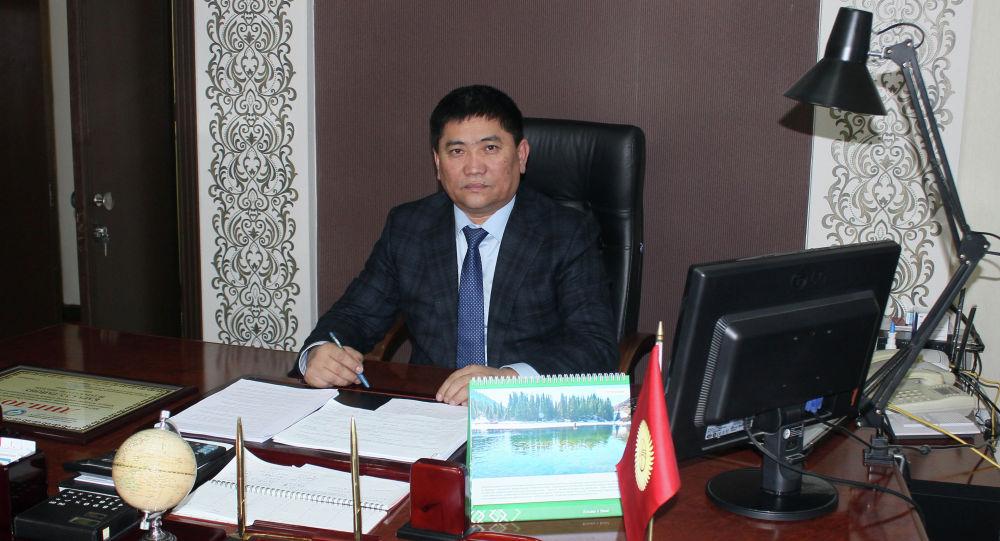 Бывший аким Кара-Сууйского района Тилек Матраимов. Архивное фото