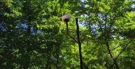 Хулиганы-вандалы разбили фонари в сквере на пересечении улиц Айни и Чапаева