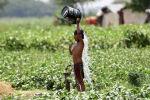 Мальчик поливает себя водой в жаркий день. Архивное фото