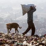 Нью-Дели шаарындагы таштанды жайында иштеп жаткан киши
