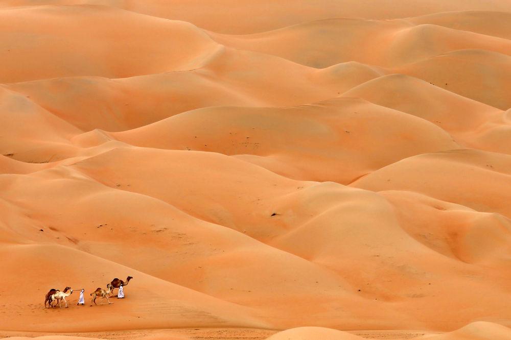 Абу-Дабидеги чөл