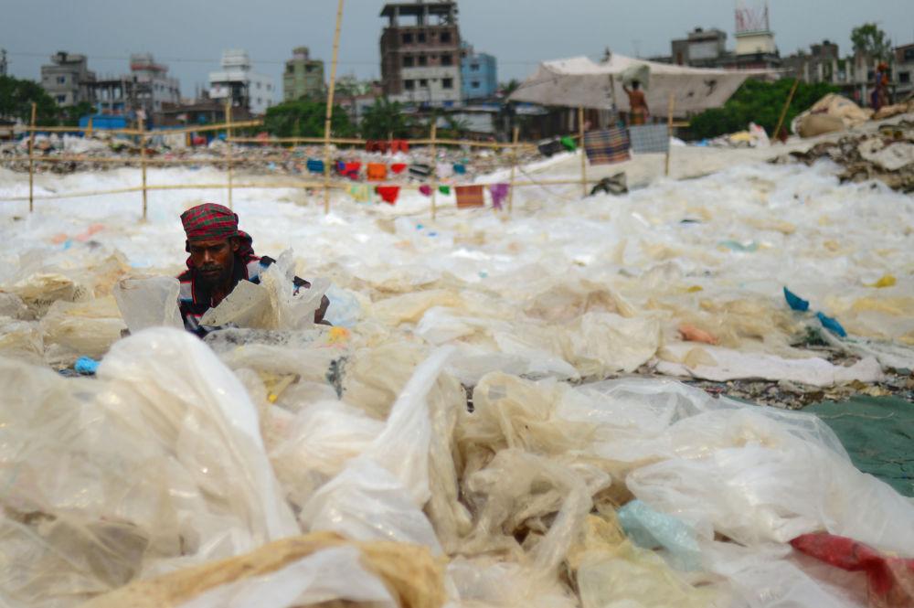 Желимдерди сорттогон жумушчу. Дакка, Бангладеш