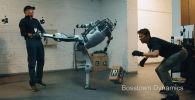 В ролике двое людей измываются над роботом.
