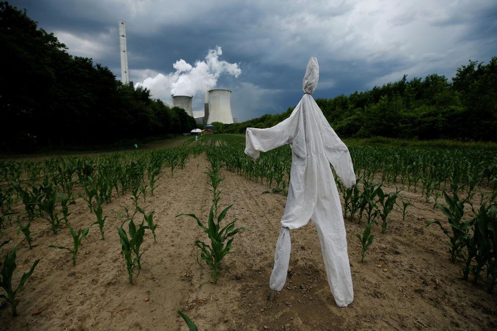 Чучело на поле близ угольной электростанции в немецком городе Нойрате
