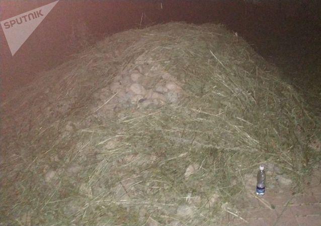 Камни прикрытые сеном