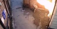 В городе Эксетере (Великобритания) мужчина пытался сжечь синагогу и пострадал сам.
