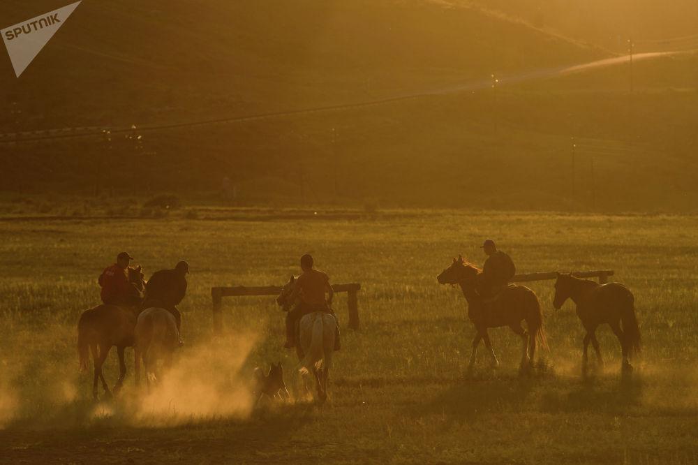 Тоолуу Алтайда көк бөрү боюнча республикалык чемпионат өттү. Ага Новосибирскидеги кыргыздардын командасы дагы катышып келди.