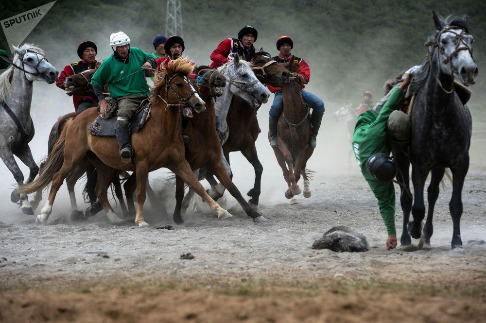 Алтайдагы көк бөрү оюндары эл аралык эреже менен өтүп, оюн талаасына атайын тай казан орнотулган.
