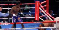 В американском Оксон-Хилле (штат Мэриленд) в минувшие выходные состоялся турнир по профессиональному боксу, в одном из главных поединков которого встретились супертяжеловесы Кассиус Чейни и Жоэль Коуди.