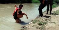 МЧС Кыргызстана распространило видеоролик, где объясняются правила оказания первой помощь ребенку, который едва не утонул.