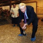 Премьер-министр Великобритании Борис Джонсон на ферме Шервингтон в Уэльсе