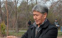 Мурдагы президент Алмазбек Атамбаев. Архивдик сүрөт