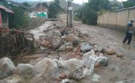 Последствия схода сели в селе Бостери Иссык-Кульской области