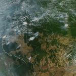 В лесах Амазонии с начала года зафиксировано рекордное количество природных пожаров. Густой дым накрыл несколько бразильских городов.  Тропические леса Амазонии занимают 5,5 миллиона квадратных километров и вырабатывают около 20 процентов кислорода, которым дышит планета.