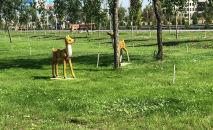 На территории нового парка в Бишкеке установили фигуры зверей из мультфильмов кинокомпании Walt Disney
