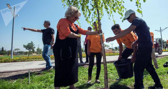 Руководитель Елена Череменина и сотрудники информационного агентства и радио Sputnik Кыргызстан приняли участие в социальной акции Парк для жизни и высадили в новом бишкекском парке пять берез