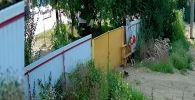 Пользователей соцсетей позабавило видео, на котором запечатлена кража подростками садовой тачки.