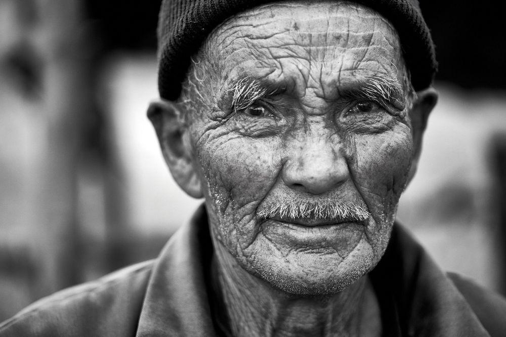Дедушке 90 лет, и утро он провел, ухаживая за лошадьми. Ватсон увидел его, когда пенсионер шел с двумя ведрами воды. Дедушка согласился попозировать и опустил ведра.